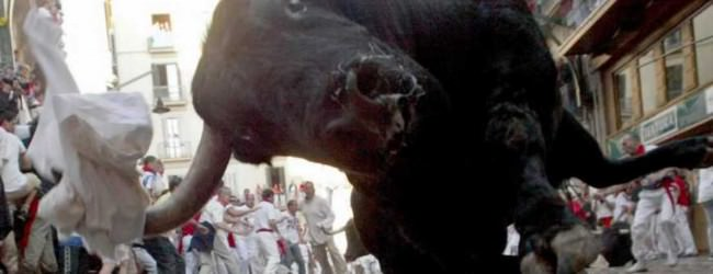 """Statele Unite vor organiza o """"fuga cu taurii"""" dupa modelul din Spania"""