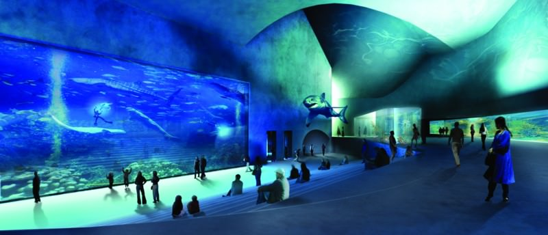 blue planet aquarium 1 800