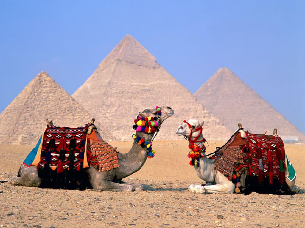 vacanta egipt1
