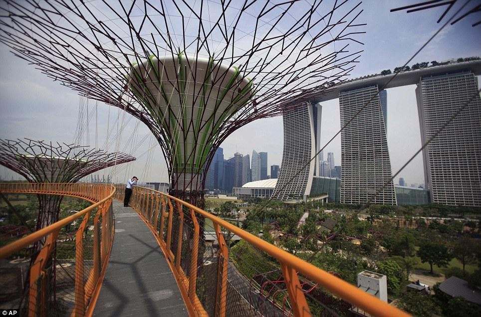 super-copaci-singapore4