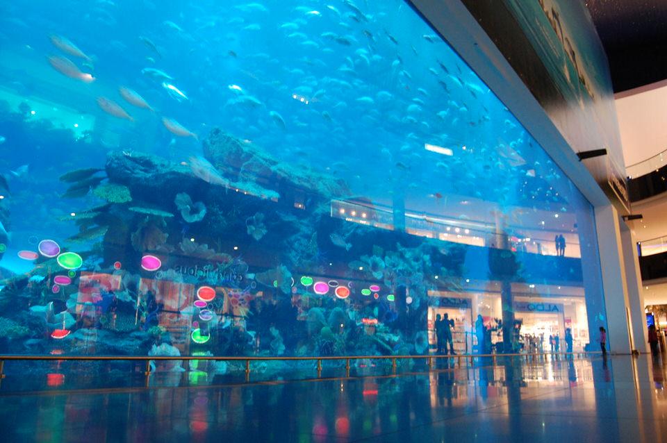 acvariul-din-dubai