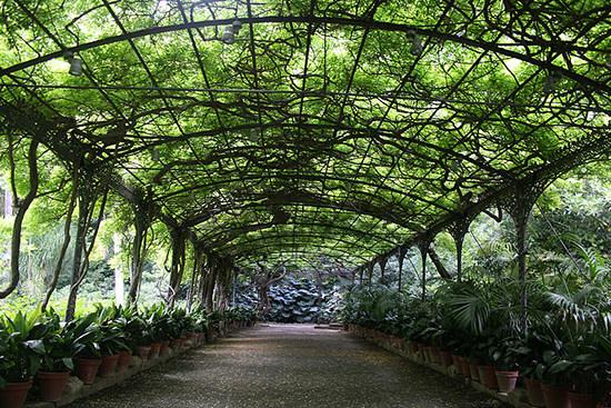 la-concepcion-gradina-botanica-malaga