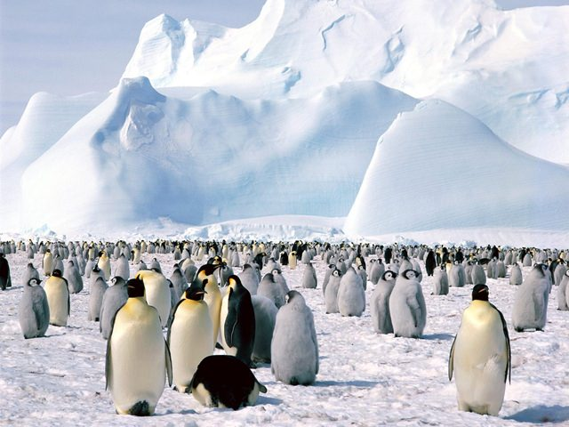 misterele-antarcticii2