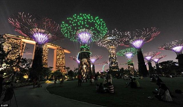 copaci_singapore