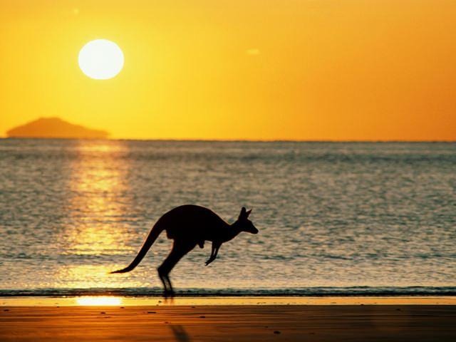mistere-nestiute-australia (7)
