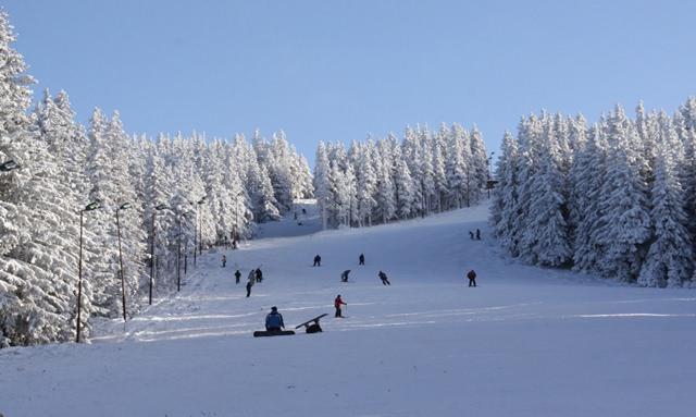 Lista partiilor de schi din Romania