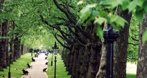 Cel mai frumos parc din Londra: Parcul Hyde