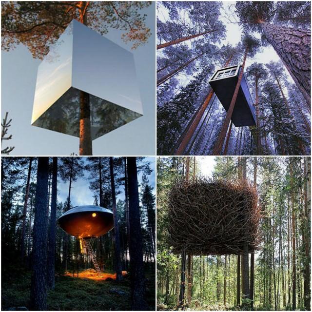 23 - 11 Treehotel Sweden