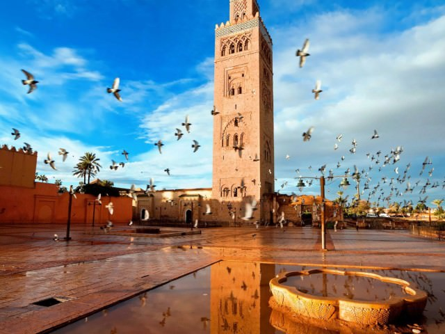 though-the-city-is-constantly-bustling-its-easy-to-find-calm-moments-the-koutoubia-mosque-feels-like-a-peaceful-respite-from-the-chaos-of-the-souks