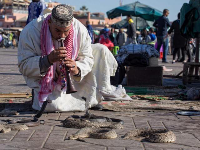 you-may-even-see-snake-charmers