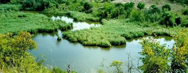Rezervaţia Naturală Hagieni