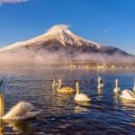 12 motive sa vizitati Japonia