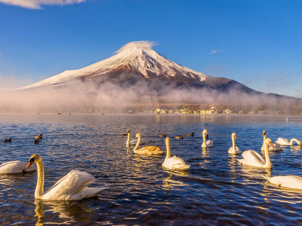 mount-fuji-located-on-honshu-island-is-japans-highest-mountain-at-a-staggering-12389-feet-its-an-active-stratovolcano-a-unesco-world-heritage-site-and-one-of-japans-most-popular-tourist-sites