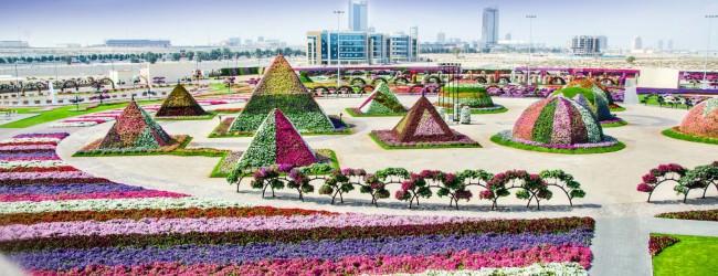 Grădina cu flori din Dubai
