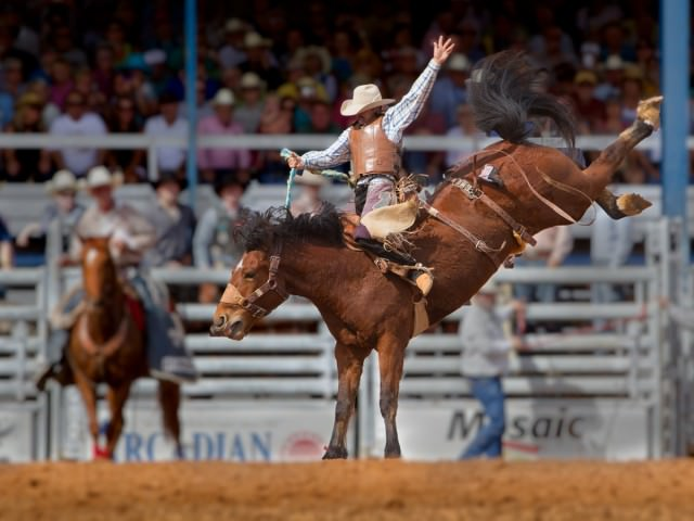 colorado rodeo
