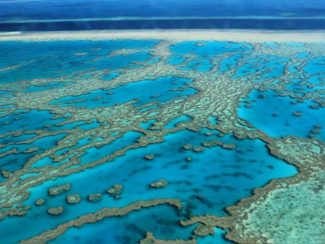 marea bariera de coral