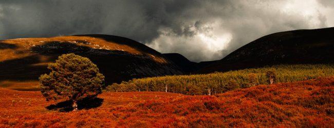 Obiective turistice in Scotia – ce trebuie sa faceti si sa vedeti