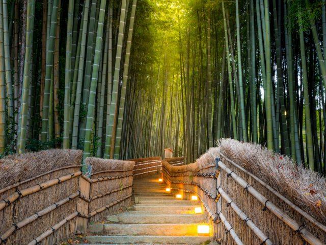 arashiyama-3