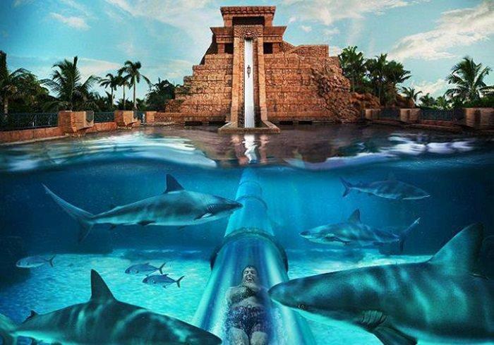 Atlantis-Resort-Bahamas-Waterslide