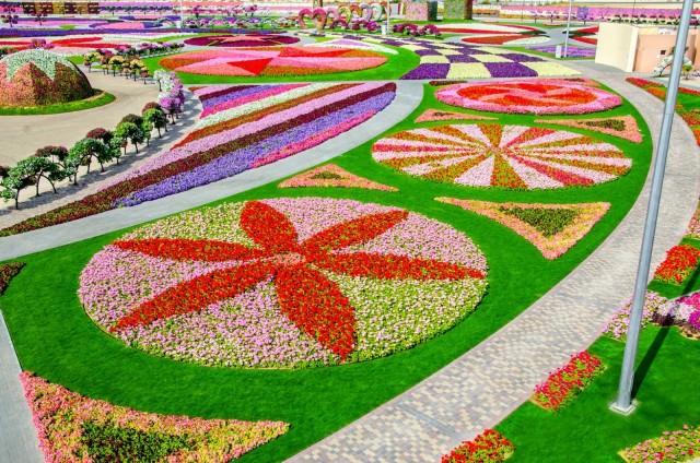 Dubai-Miracle-Garden-21-HD-Image
