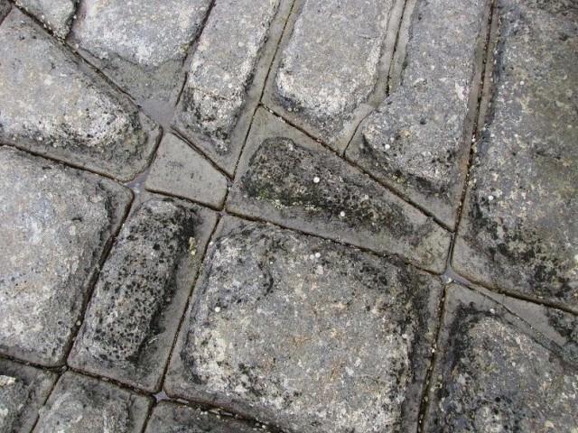 tessellated-pavement-6[2]