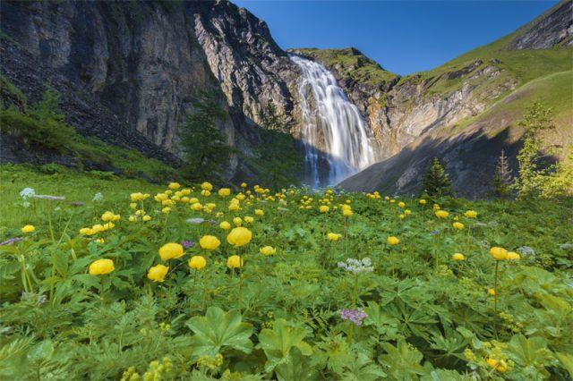 ADELBODEN - Die Engstligen Wasserfaelle, mit 600 Metern die zweithoechsten Wasserfaelle der Schweiz leuchten im Sonnenschein. The Engstlige Waterfalls bathe in sunlight. At 600m they are the second  Copyright by Adelboden Tourismus By-line:swiss-image.ch/ Andreas Gerth